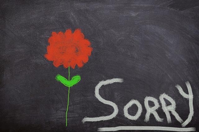 Apologising via email